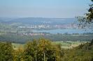Bodensee vom Schiener Berg